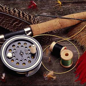Охотничьи и рыболовные магазины Лесного Городока